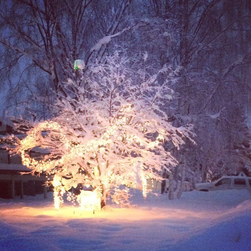 Photo Dec 21, 16 24 36