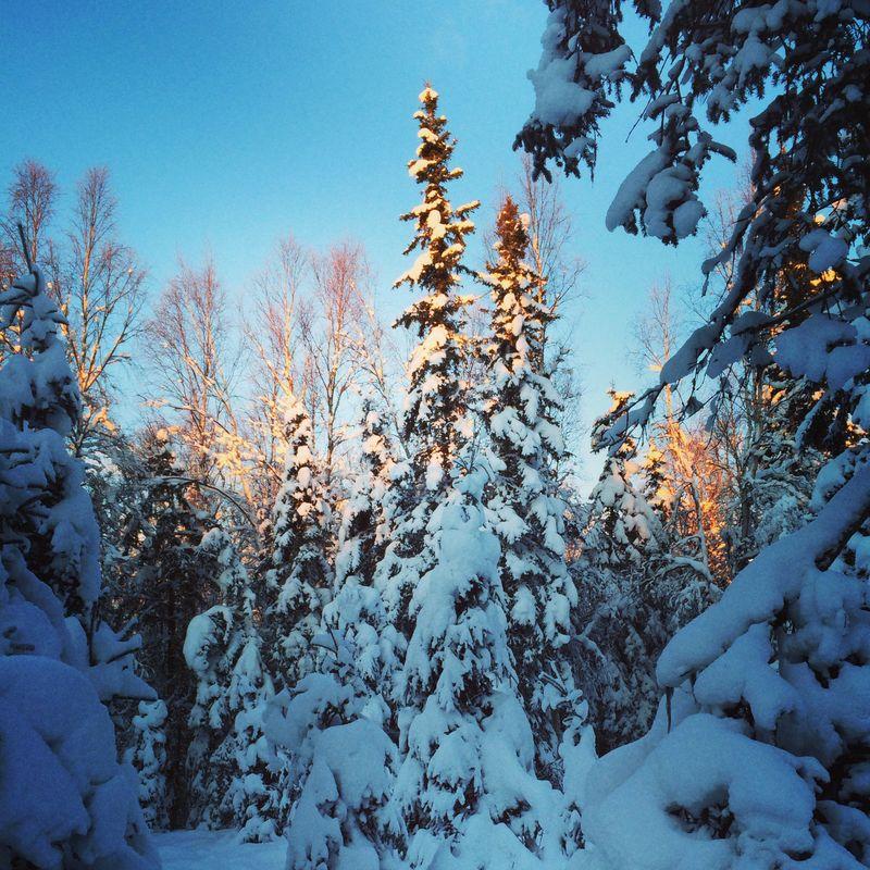 Photo Dec 26, 15 10 17