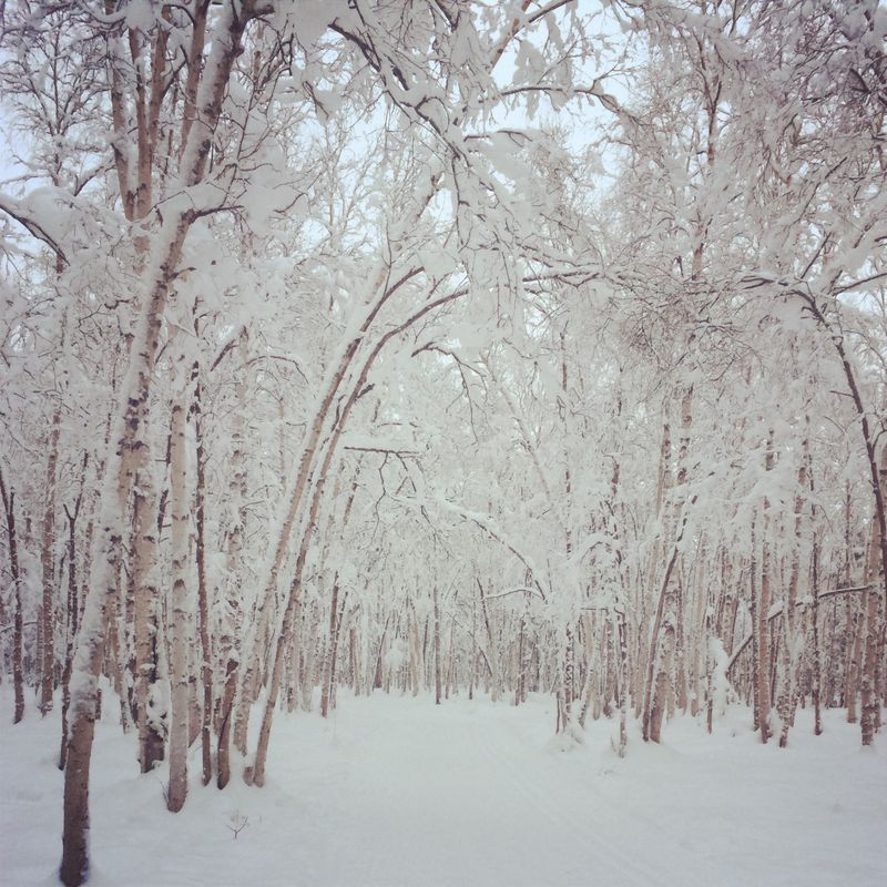 Photo Dec 21, 15 14 17