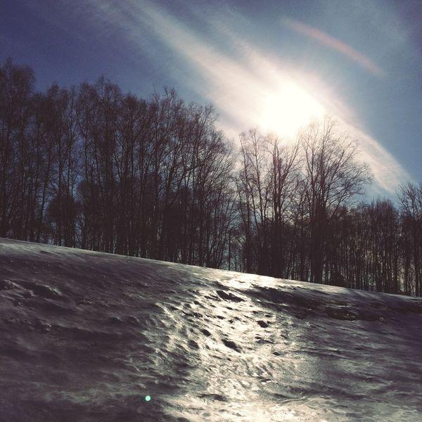 Photo Mar 29, 12 27 22