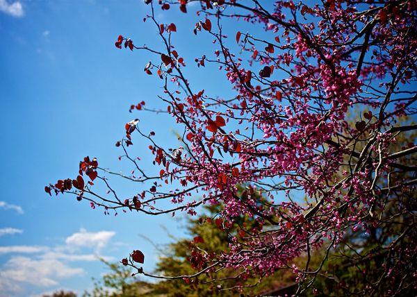2014-04-26-IMG_6278