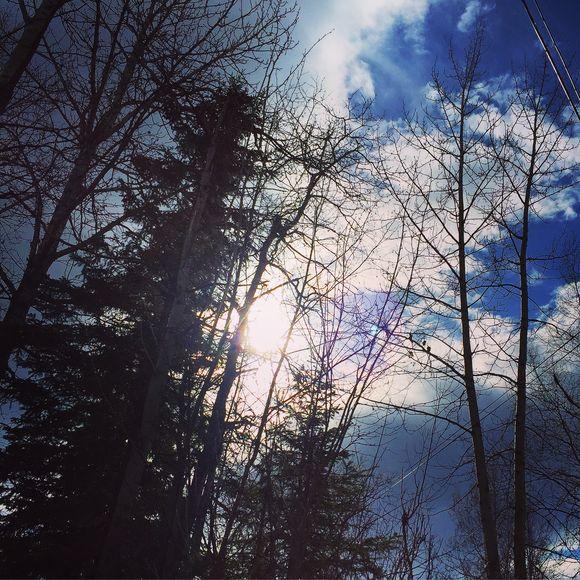 Photo Apr 18, 16 35 12